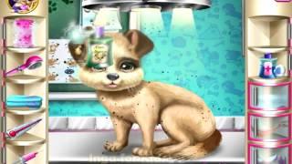 Спасение щеночка у ветеринара   Puppy Rescue Vet   игра для детей