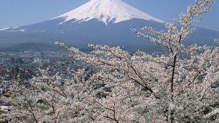 Sakura Sakura Piano Solo Arrangement