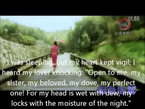 Louis - Fern-leaf Hedge Bamboo Under Moonlight Lyrics ...