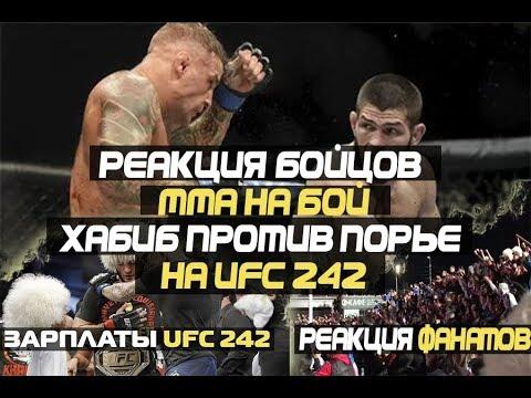 Реакция Бойцов ММА на БОЙ Хабиб против Порье на UFC 242 /Реакция фанаты Хабиба после боя