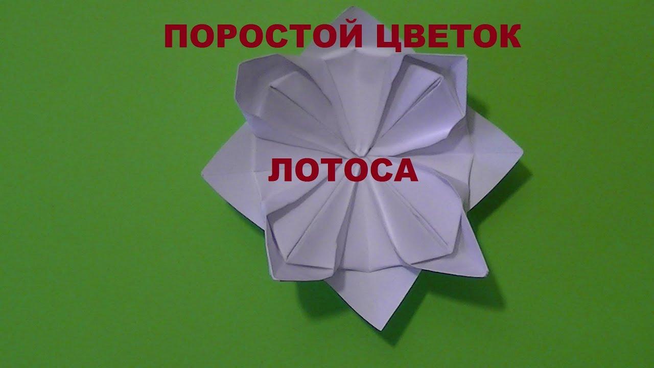 Как сделать цветочек из простой бумаги 53