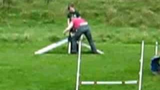 Wicket Tries Agility