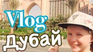 VLOG: Дубай // Отель