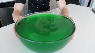 1 Gallon Jell-o Challenge (Lime)