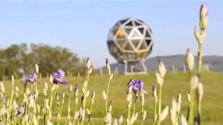 Pratolino: la natura si risveglia nel parco di villa Demidoff, chiuso per emergenza Coronavirus
