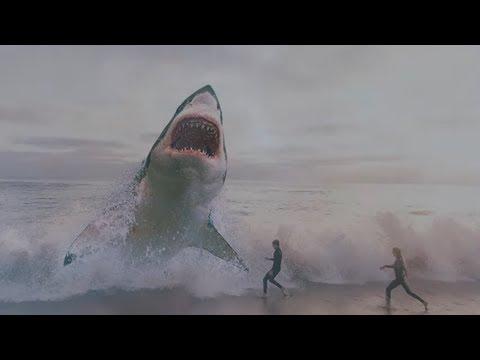 Craziest Shark Discoveries