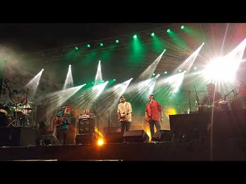 Bacardi NH7 Weekender Express Indore 2017 - Indian Ocean Band Live Performance