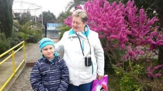 Отдых в Сочи с детьми(Тур выходного дня