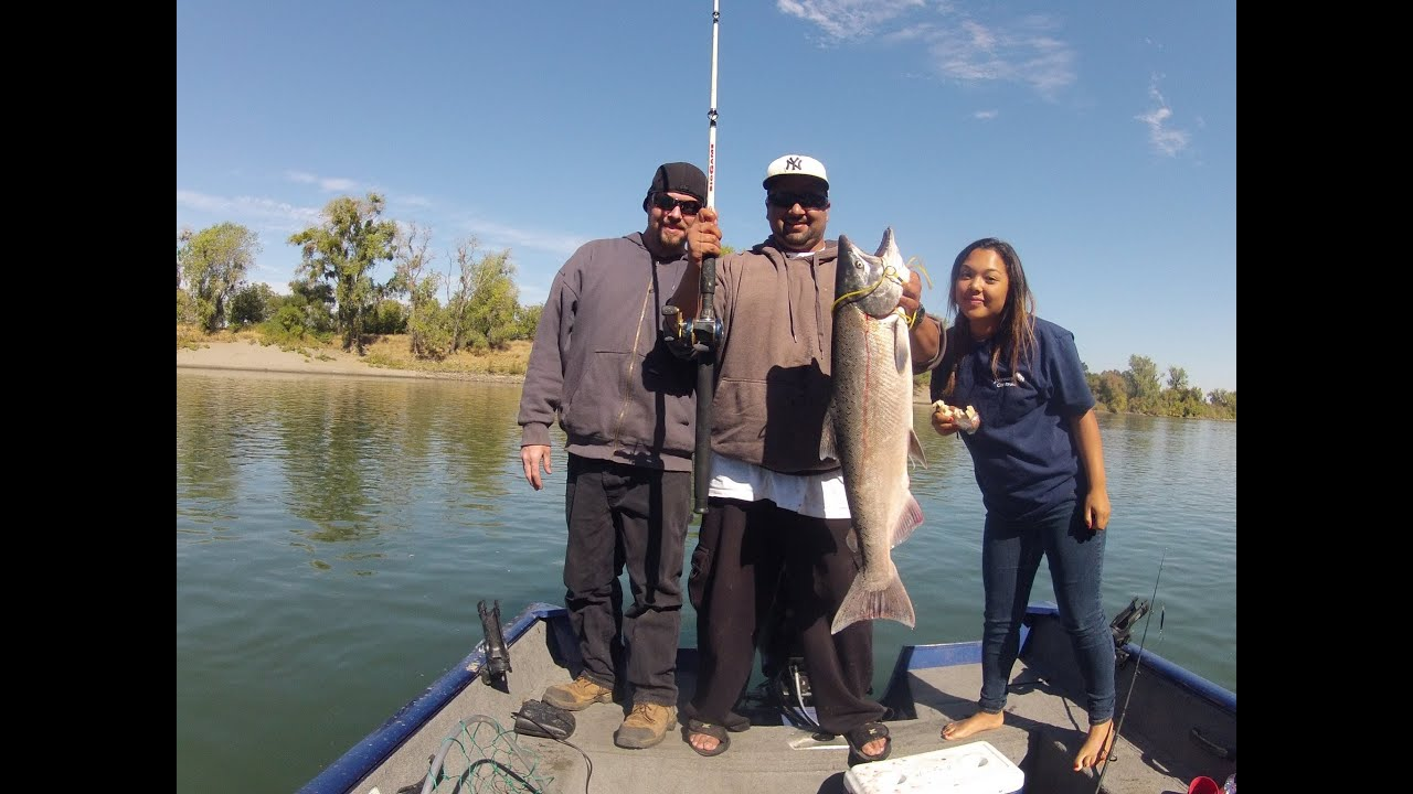 Sacramento river salmon fishing october 2013 part 2 the for Sacramento river fishing