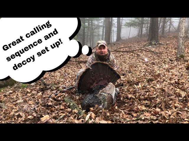 Calling Turkeys Off The Roost | 2019 PA Spring Gobbler Season