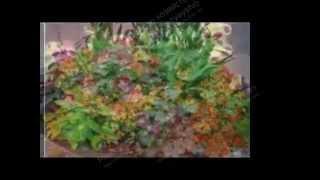 Красивые цветочные компазиции для украшения сада
