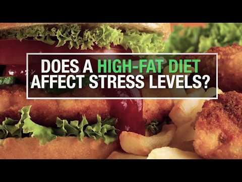Does a high-fat diet affect stress levels?