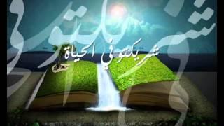 Yara - Beyt Habibi يارا - بيت حبيبي