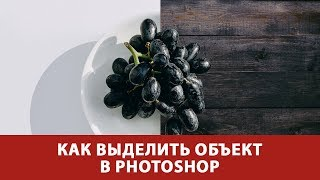 Новинка! Photoshop CC:  выделение объектов. Онлайн-курс от Fotoshkola.net HD