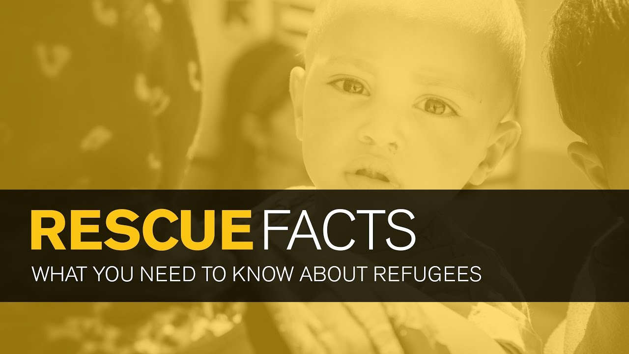 Messages From the IRC MoreThanRefugee