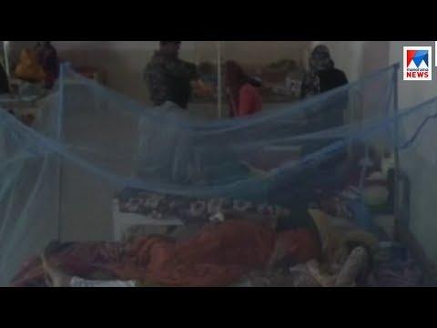മലപ്പുറത്ത് നിപ്പയെത്തിയത് ഡെങ്കിക്കും എലിപ്പനിക്കും പിന്നാലെ | Malappuram | Nipah virus