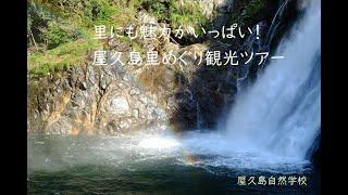 【屋久島里めぐり観光ツアー】屋久島は山や森だけではなく、里(麓)にも魅力がいっぱいですよ。