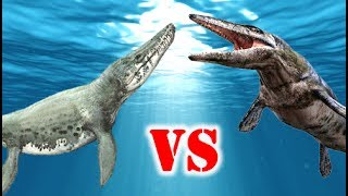 Tylosaurus Vs Kronosaurus Who Would Win?