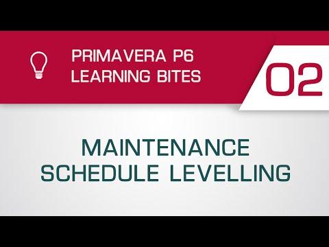 Primavera P6 Learning Bite 2 - Maintenance Schedule Levelling (Professional Client)