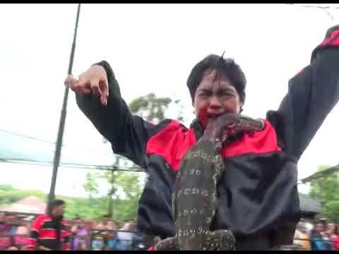 SUPER PEGON INDONESIA VOL 1 - SAMBOYO PUTRO