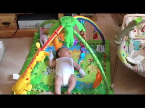 Fisher-price Rainforest Deluxe Gym With Baby Emmy