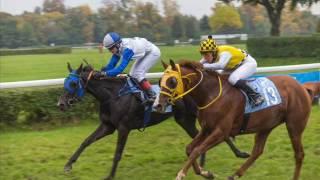 Hubertus na wrocławskich Partynicach zakończył sezon wyścigów