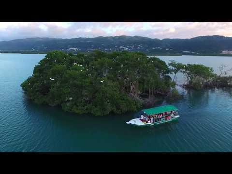 Bogue Lagoon Fish Sanctuary and Bird Island