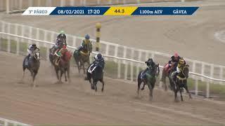 Vidéo de la course PMU PREMIO BOWLING