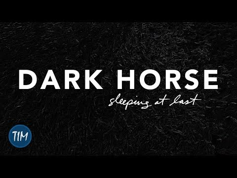 Dark Horse | Sleeping At Last