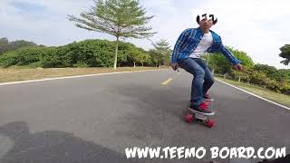 Teemo Board:Best electric skateboard review under $300 and top speed 28mph