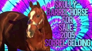 SKULLY - Barrel horse for sale - 2005 Sorrel Gelding!