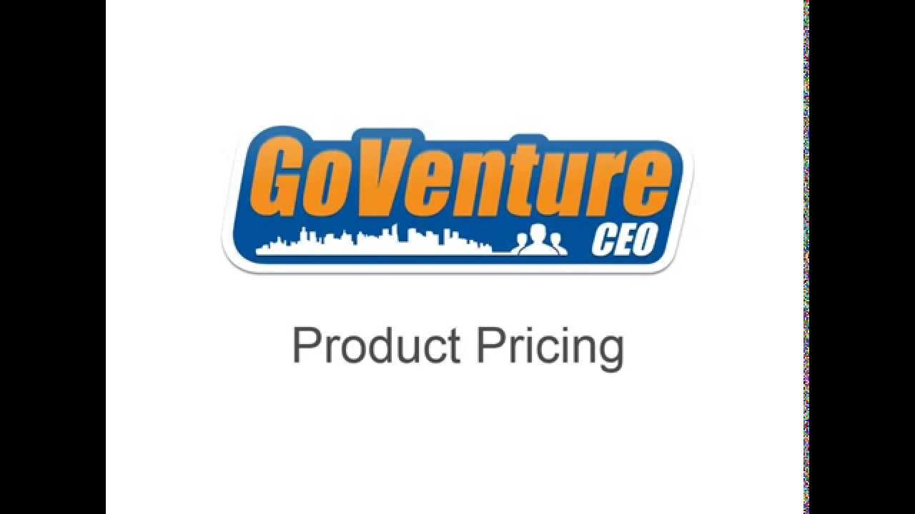 GoVenture CEO Business Simulator Pricing Tutorial for Students