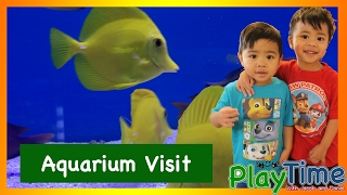 Aquarium and Fish Store for Kids! (PlayTime with Jacob and Daniel)