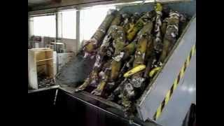 Food Waste Biomass Shredder - Trituratore Rifiuti Alimentari Biomasse