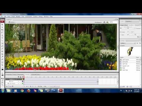 cách làm con bướm bay flash cs3.flv