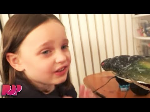 Youtube Cracking Down On CREEPY Children's Videos
