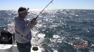 Carolina Fishing TV - Season 3/12 - King Mackerel