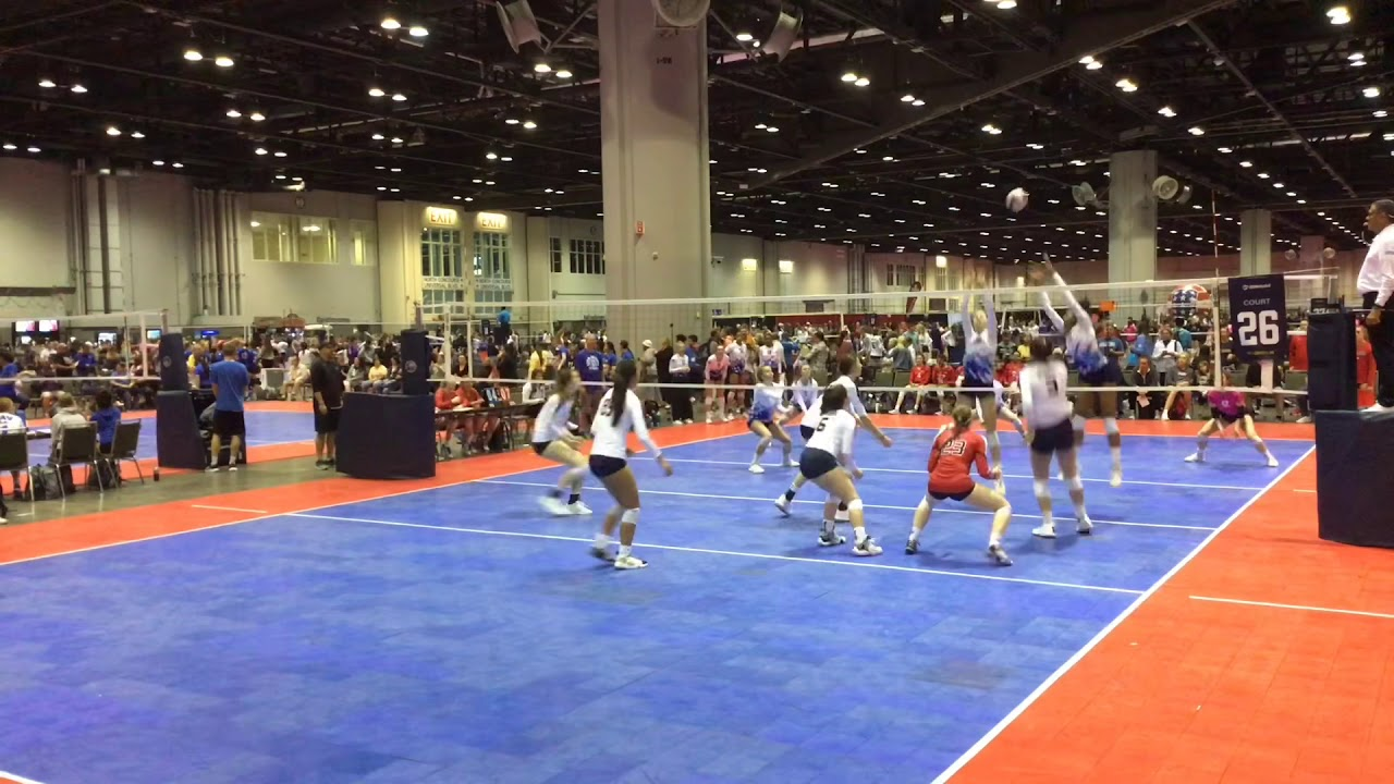 University Of New Haven Connecticut Women S Volleyball Recruiting Scholarship Information Sportsrecruits