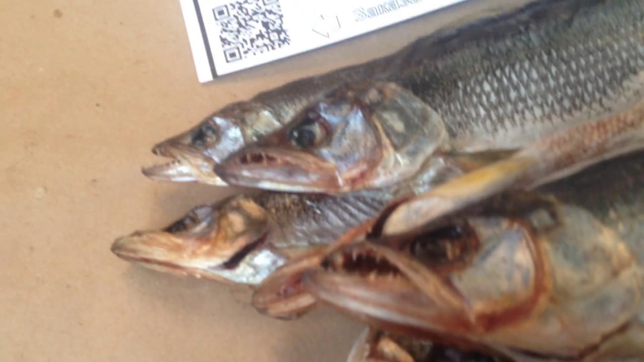 По прошествии 4 дней, рыба должна быть готова.