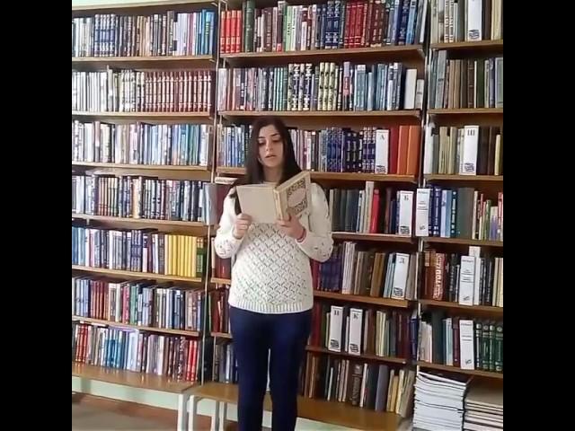 Изображение предпросмотра прочтения – НадеждаГайдук читает произведение «Silentium» Ф.И.Тютчева