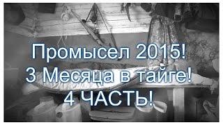 4 Часть . Промысел в тайге 2015 ! Охотничий быт, рыба, спасаю хлеб. Красивая речка.