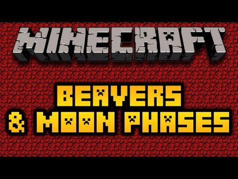 Minecraft Beavers & Moon Stages (HD)