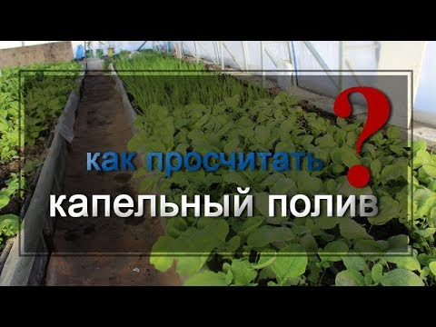 видео: Как правильно рассчитать капельный полив у себя на участке