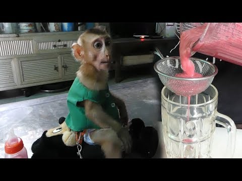 Wow Super Strong Baby Dodo!! Mom Make Miracle Drink For Cutie Dodo