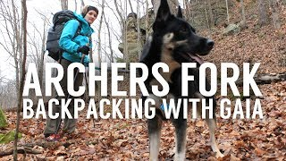 Archers Fork Backpacking With A Dog - Wayne National Forest - Winter Backpacking