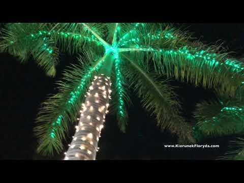 Speed Dating Lakeland na Florydzie