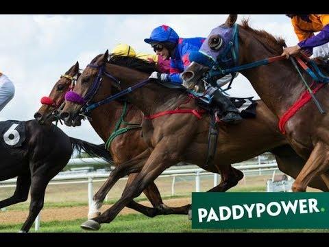Horse racing tips Paddy Power betting expert reckons Crystal Ocean might make a splash at