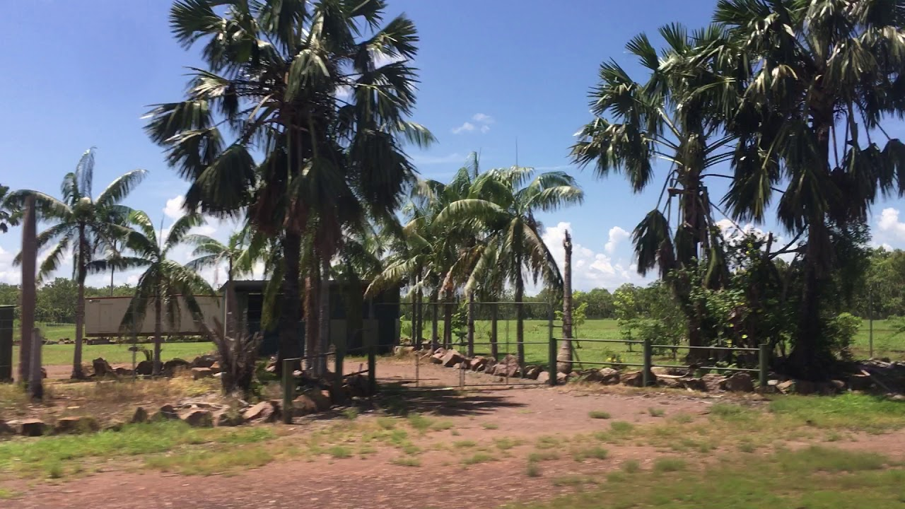 Người Việt giàu Sụ khi sang Úc làm Nông nghiệp Sạch An Toàn