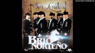 Conjunto Brio Norteno 2013 - Tonta
