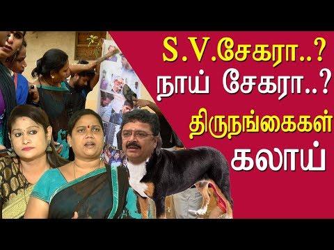 He is a Naai shekher transgender on s ve shekher tamil news live, tamil live news, tamil news redpix